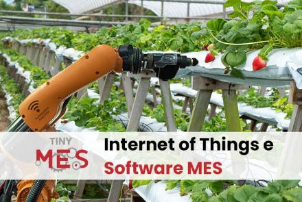 IoT e Software MES - Sistema MES Tiny-MES